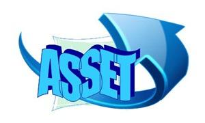 Asset.jpg